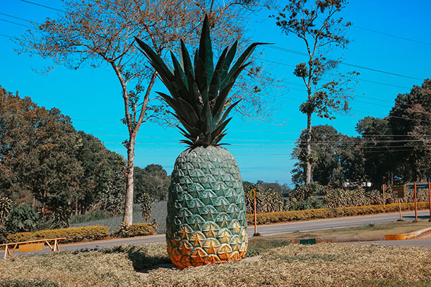 Camp Phillips Pineapple Statue
