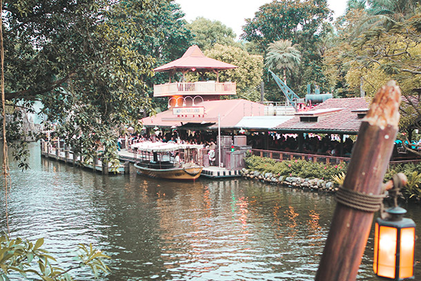 Jungle River Cruise for Families