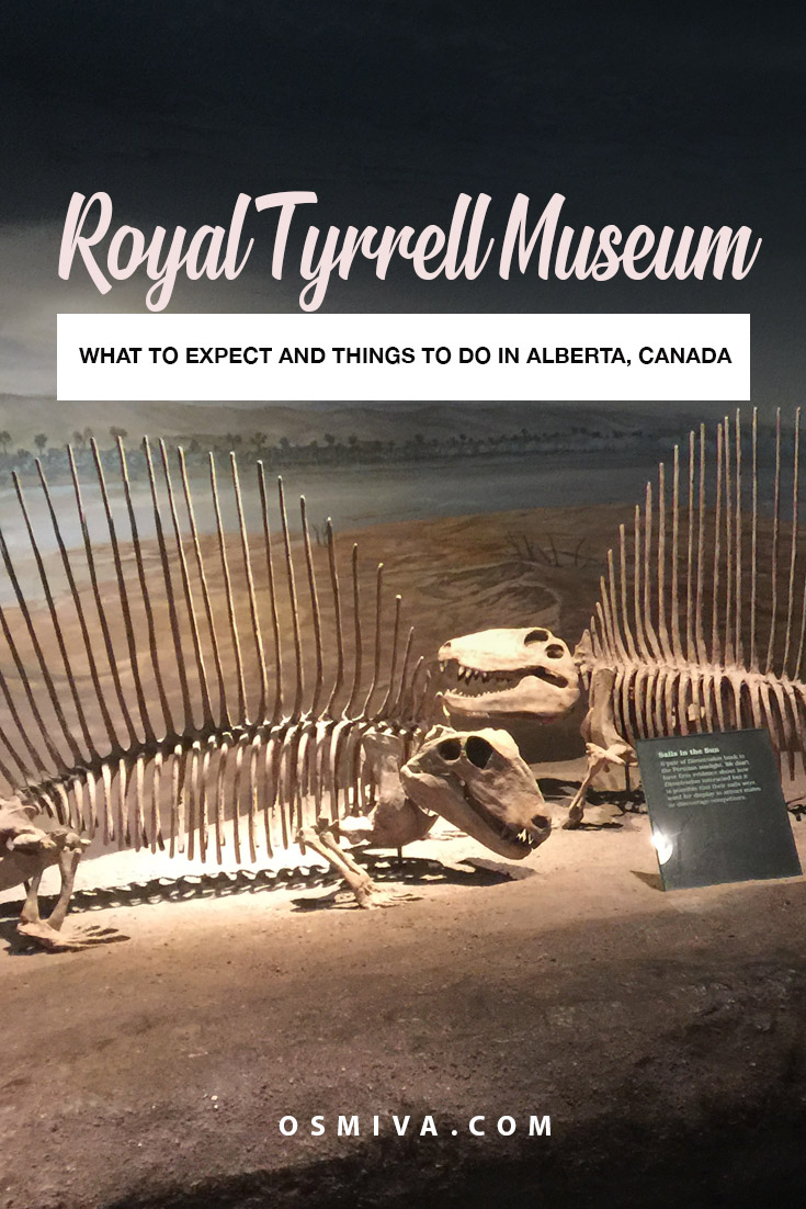 Visiting the Royal Tyrrell Museum in Alberta, Canada. Includes what to expect when visiting the museum plus a side trip to the Horseshoe Canyon for some amazing views of the Canadian Badlands! #travelguide #royaltyrrellmuseum #albertacanada #osmiva